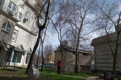 Da-sove-Sremice-budu-obeležje-Sremske-Mitrovice-5
