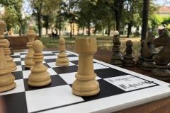 Na-partiji-šaha-sa-Inđijativom-3