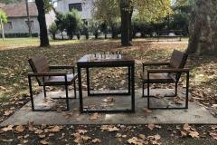 Na-partiji-šaha-sa-Inđijativom-5