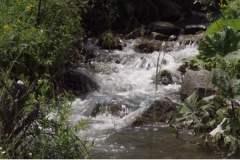unnamed-4Rakita – mirno selo sa problemom ili problematično divlje pleme