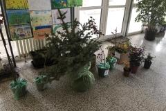 Rekonstrukcija-biblioteke-i-ozelenjavanje-prostora-za-učenike-u-Dračiću-kraj-Valjeva-3