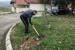 Rekonstrukcija-biblioteke-i-ozelenjavanje-prostora-za-učenike-u-Dračiću-kraj-Valjeva-8