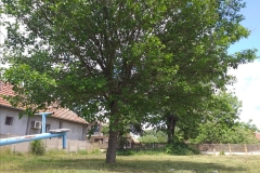 Selo-Varvarin-dobija-novo-mesto-za-okupljanje-i-rekreaciju-meštana-3
