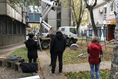 Sove-u-Sremskoj-Mitrovici-bezbedne-postavljene-nalepnice-zbog-refleksije-svetlosti-okolnih-zgrada-2