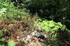 Za Sokobanju bez divljih deponija