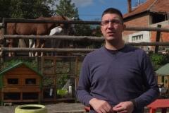 Zoo-kutak-Besplatno-druženje-sa-životinjama-za-nezbrinutu-i-decu-sa-zdravstvenim-problemima-1