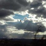 Kanjon Orlovače dobija hranilište za sure orlove