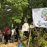 Festival šume na obroncima Fruške gore