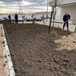 Novi Beograd: Zelenom oazom protiv betona