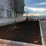 Grupa stanara sa Novog Beograda pretvorila svoje naselje u zelenu oazu